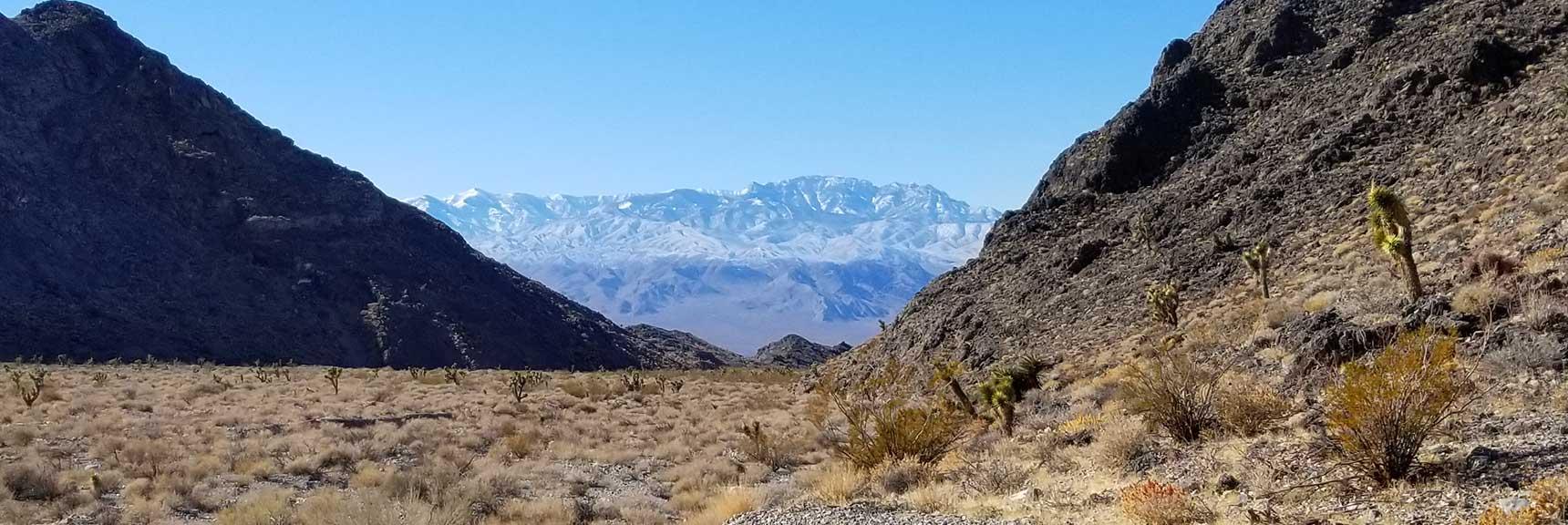 View Down the Sheep Range / Fossil Ridge Pass in the Desert National Wildlife Refuge, Nevada