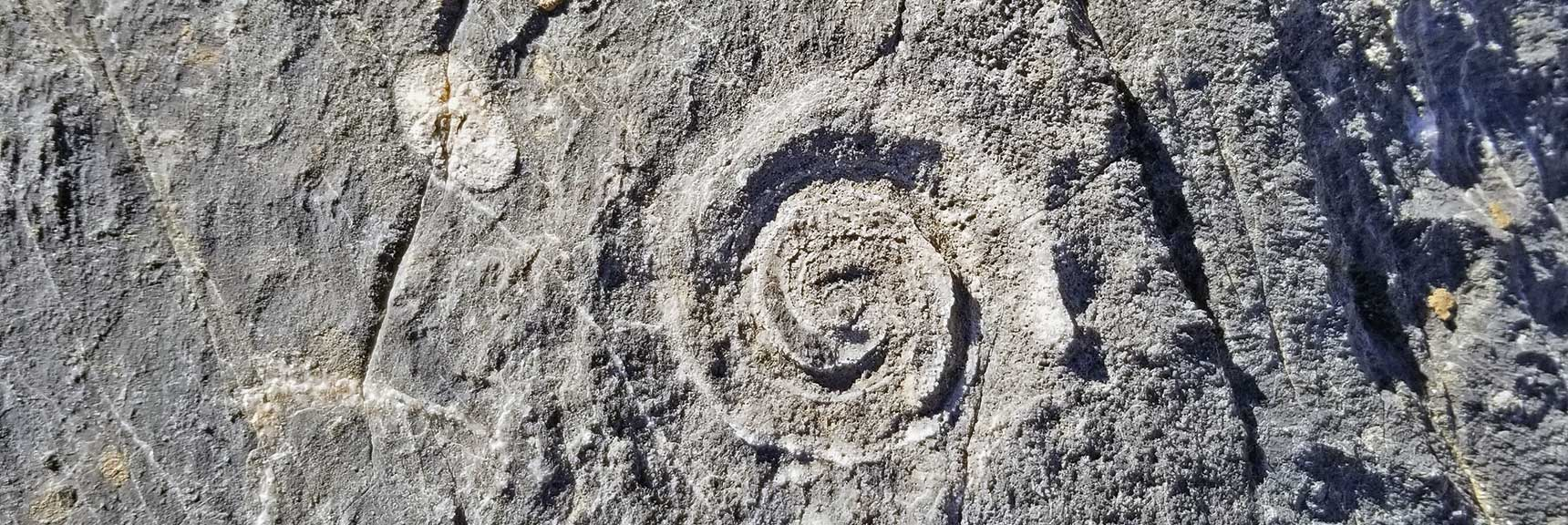 Fossil Rock on North Fossil Ridge in the Desert National Wildlife Refuge, Nevada