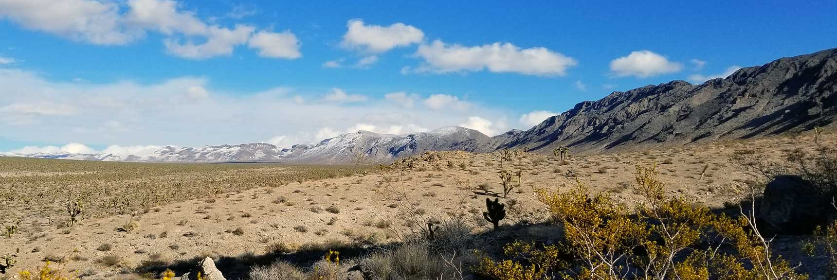View Along Fossil Ridge and Beyond South East of the Sheep Range in the Desert National Wildlife Refuge, Nevada