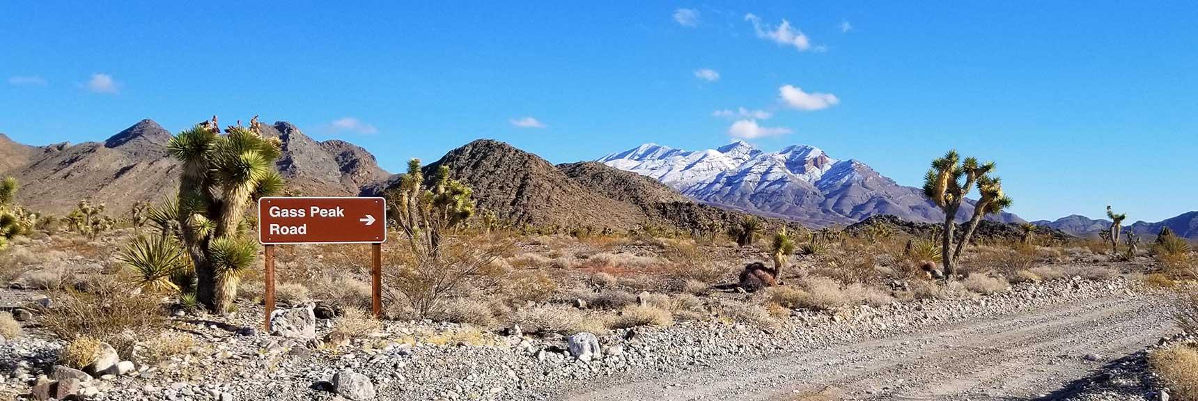 Gass Peak Viewed from Mormon Well Rd, Desert National Wildlife Refuge, Nevada