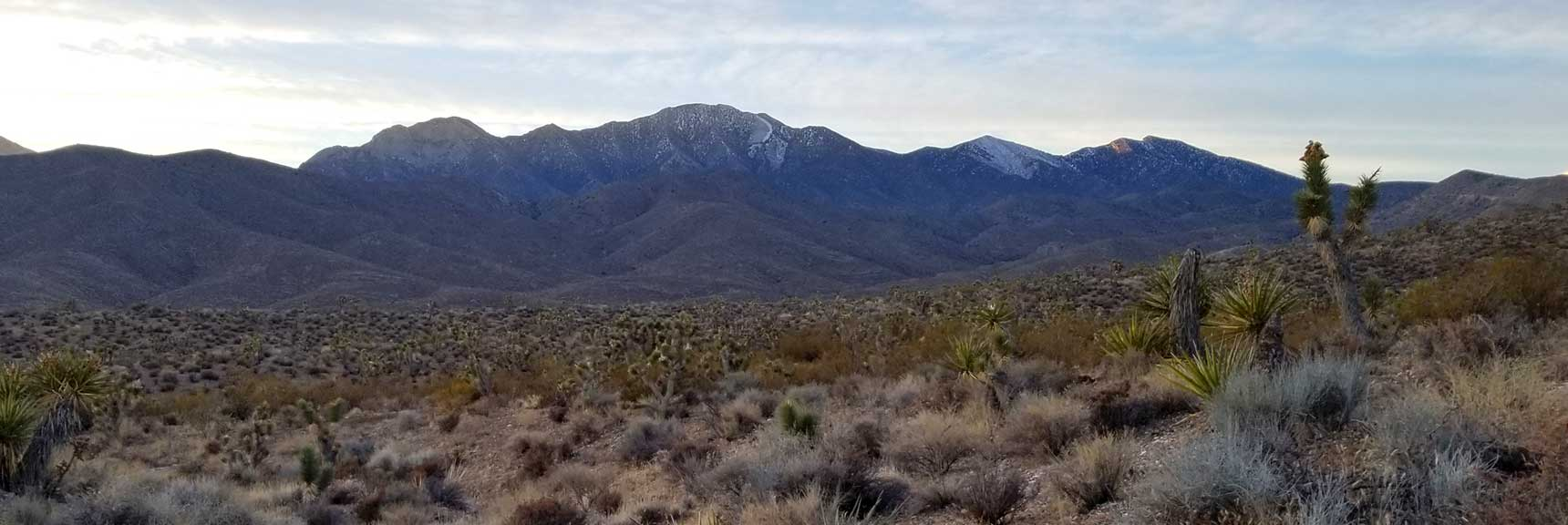 La Madre Mountain Viewed from Lower Harris Springs Road, La Madre Mountain Wilderness from the North, Nevada