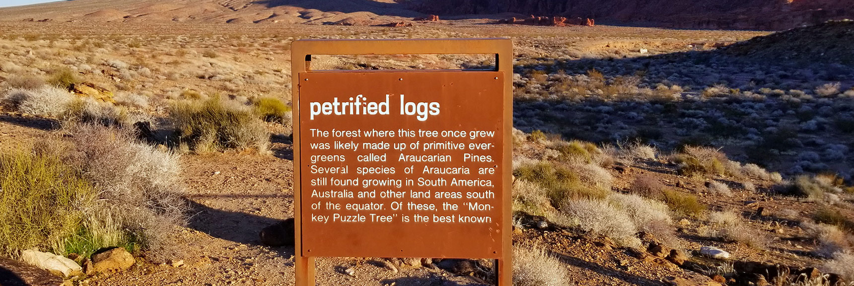 Interpretive Sign Along Petrified Logs Loop in Valley of Fire State Park, Nevada