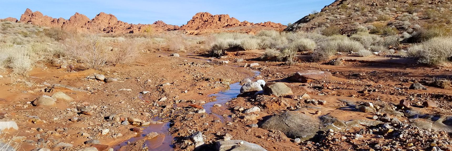 Stream Often Appears Then Disappears Into the Sand on Charlie's Spring Trail, Valley of Fire State Park, Nevada