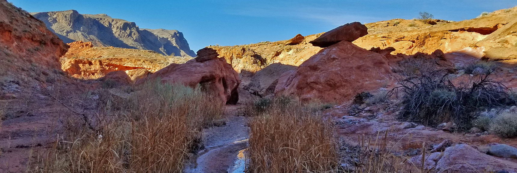 Approaching the Oasis on Charlie's Spring Trail, Valley of Fire State Park, Nevada