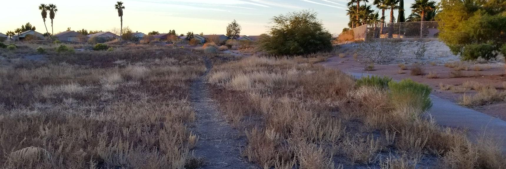 Environmental Consciousness in Las Vegas, Nevada, Slide 003