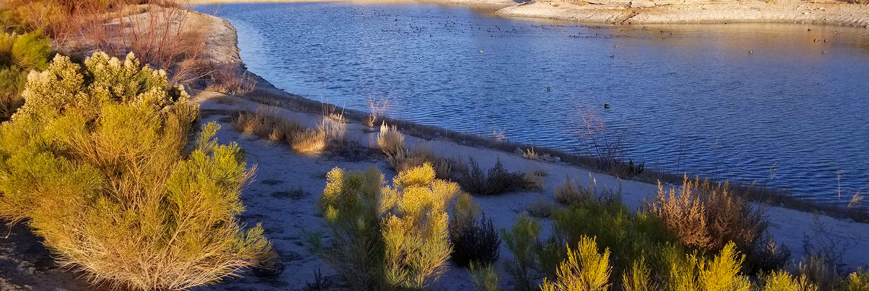 Environmental Consciousness in Las Vegas, Nevada, Slide 007