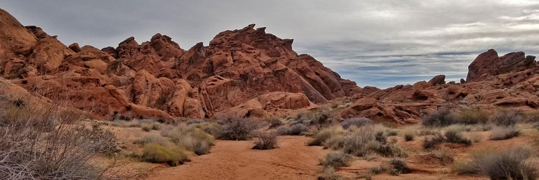 Without the Plants This Is the Planet Mars in Fire Canyon in Valley of Fire State Park, Nevada