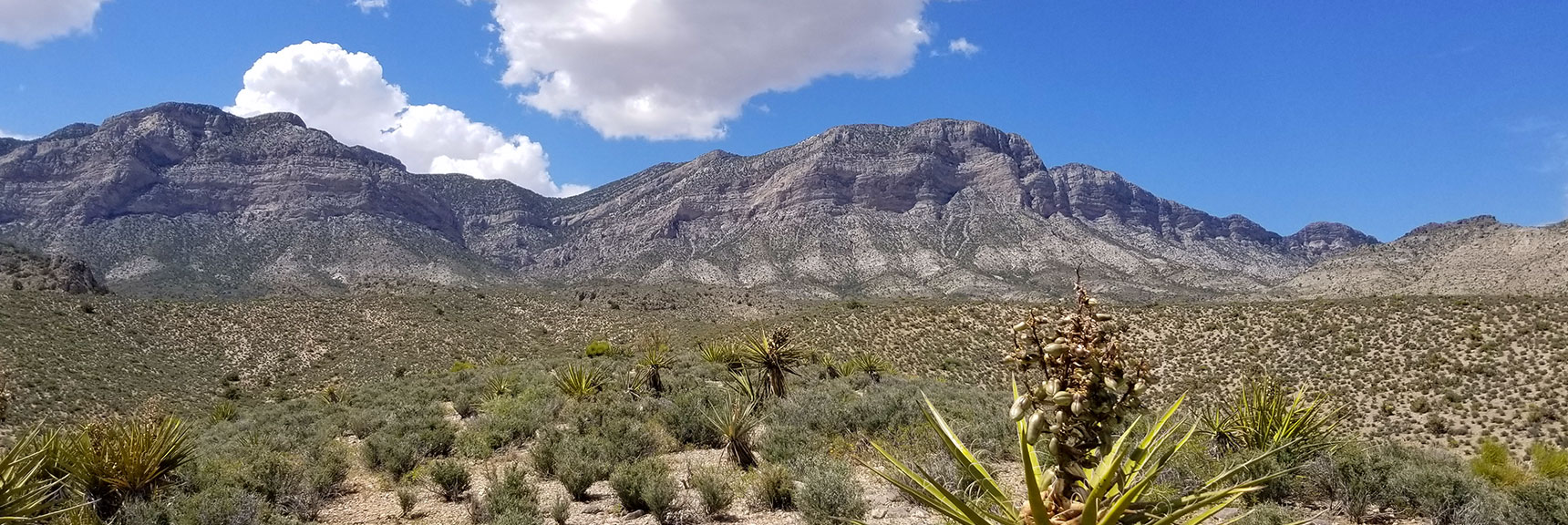 Red Rock National Park View of La Madre Mountain from Top of Scenic Drive