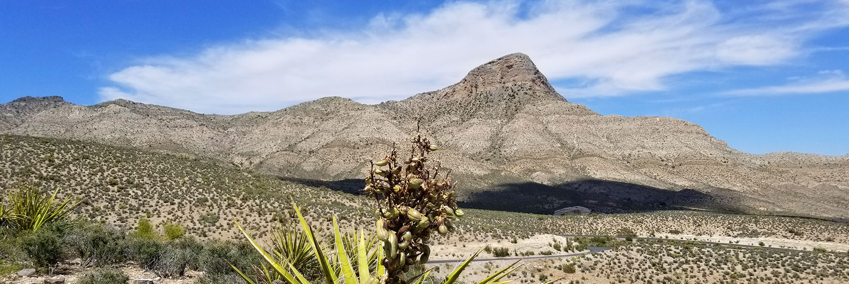 Red Rock National Park View of Turtlehead Peak from Top of Scenic Drive