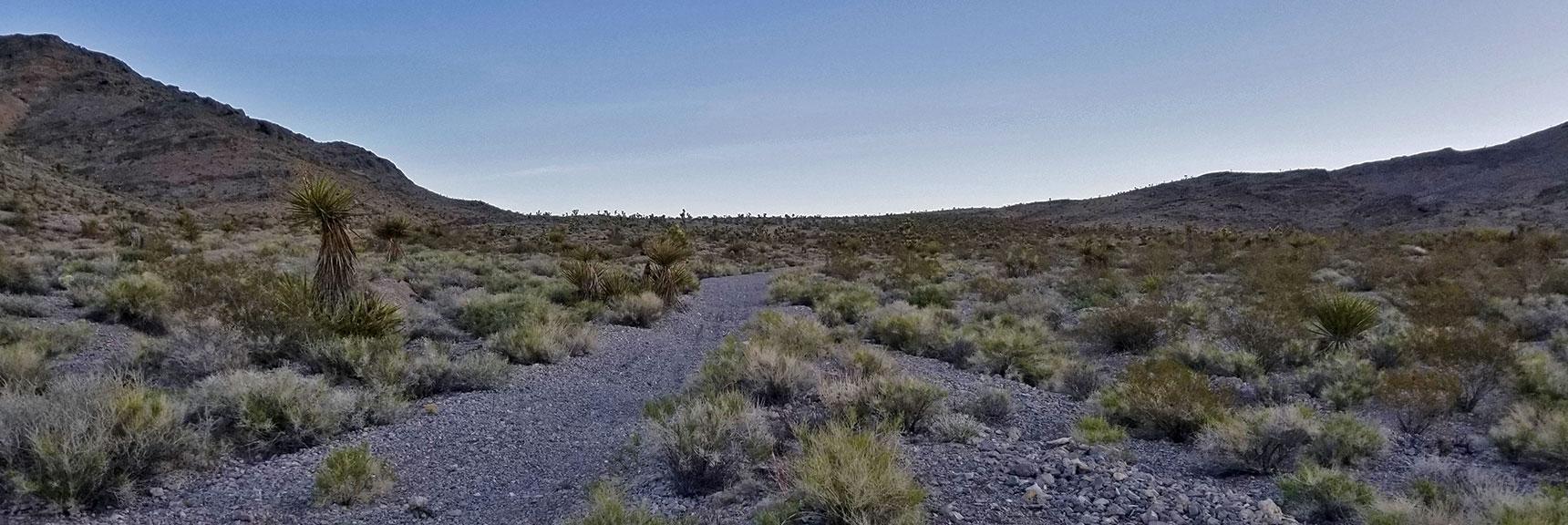 Rising Through the Castle Rock/Gass Peak Pass | Gass Peak Eastern Summit Ultra-marathon Adventure, Nevada