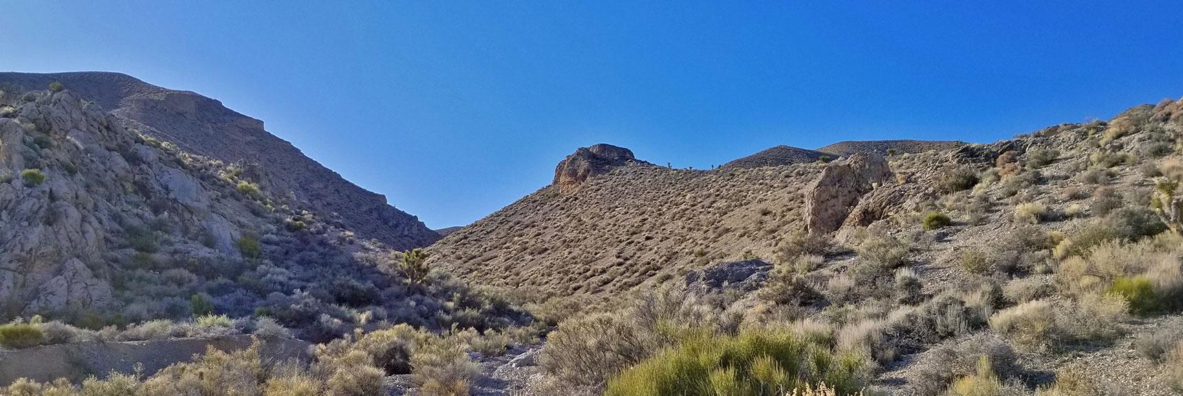 View Up the Gass Peak Mid-Summit ridge Northern Canyon Toward the Mid-Summit | Gass Peak Eastern Summit Ultra-marathon Adventure, Nevada