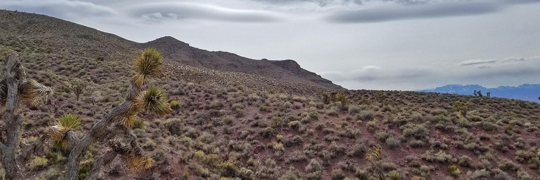 Heading Back West Along the Northern Base of Gass Peak | Gass Peak Eastern Summit Ultra-marathon Adventure, Nevada