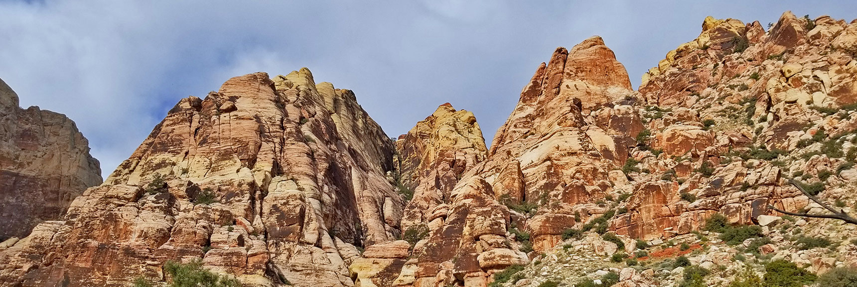 Juniper Peak, Rainbow Mountain Wilderness, Nevada