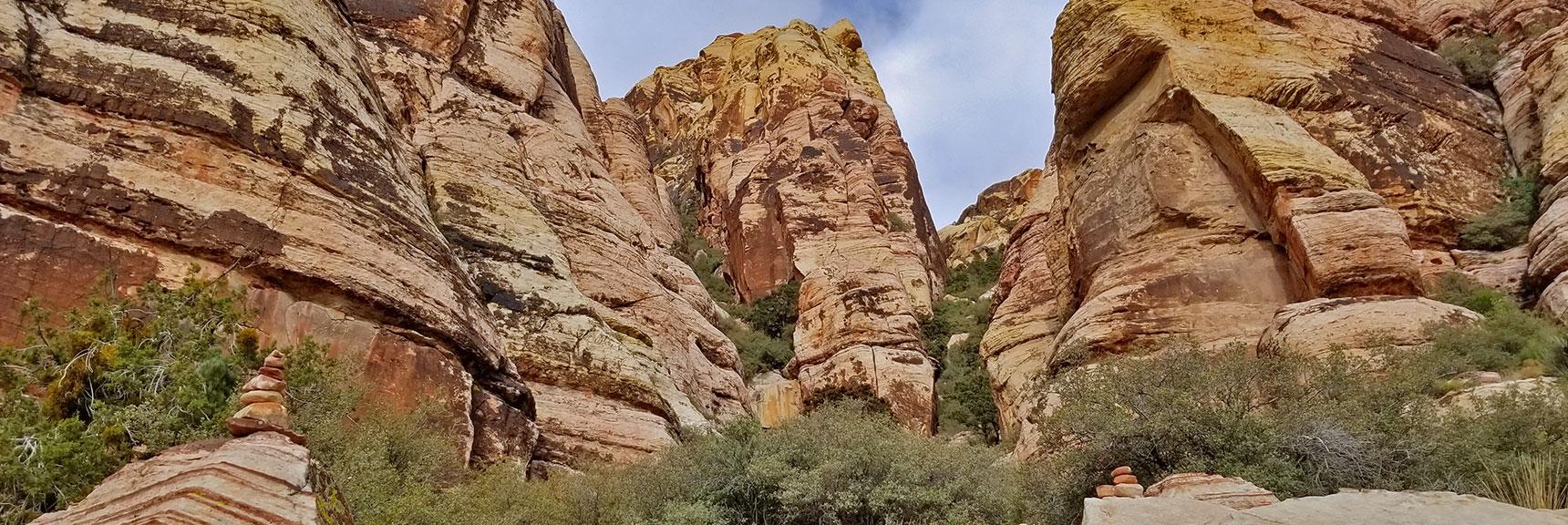 The Route Taken Up Juniper Peak, Rainbow Mountain Wilderness, Nevada