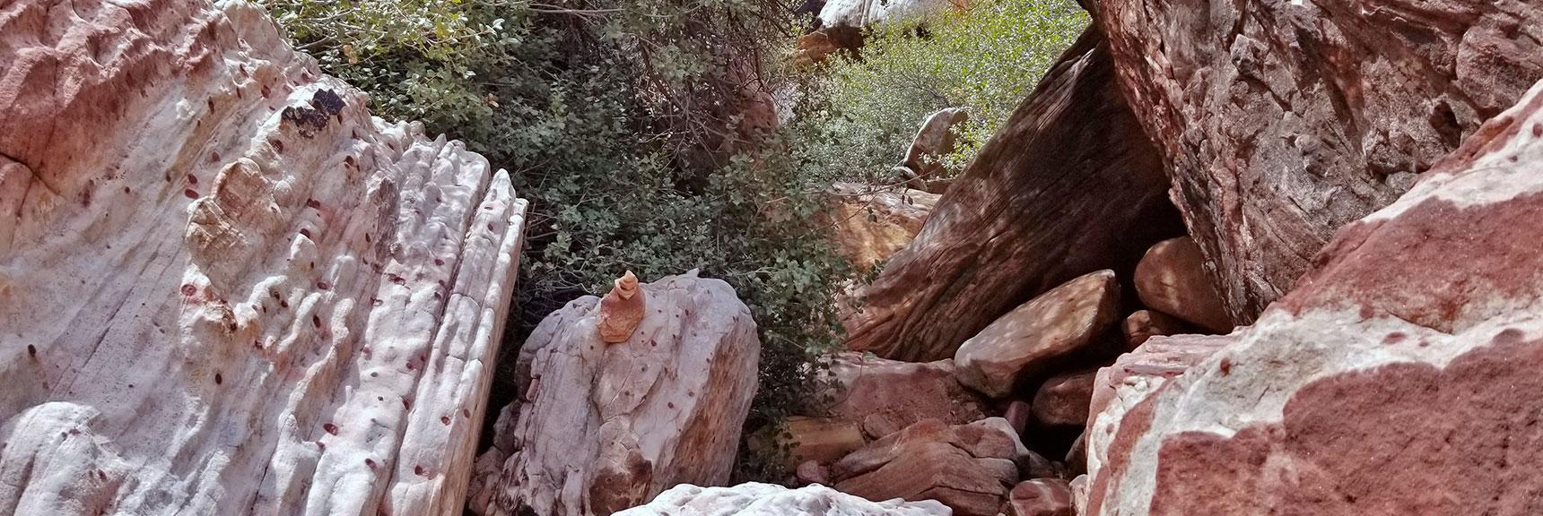 Boulders Along a Route Up Juniper Peak, Rainbow Mountain Wilderness, Nevada