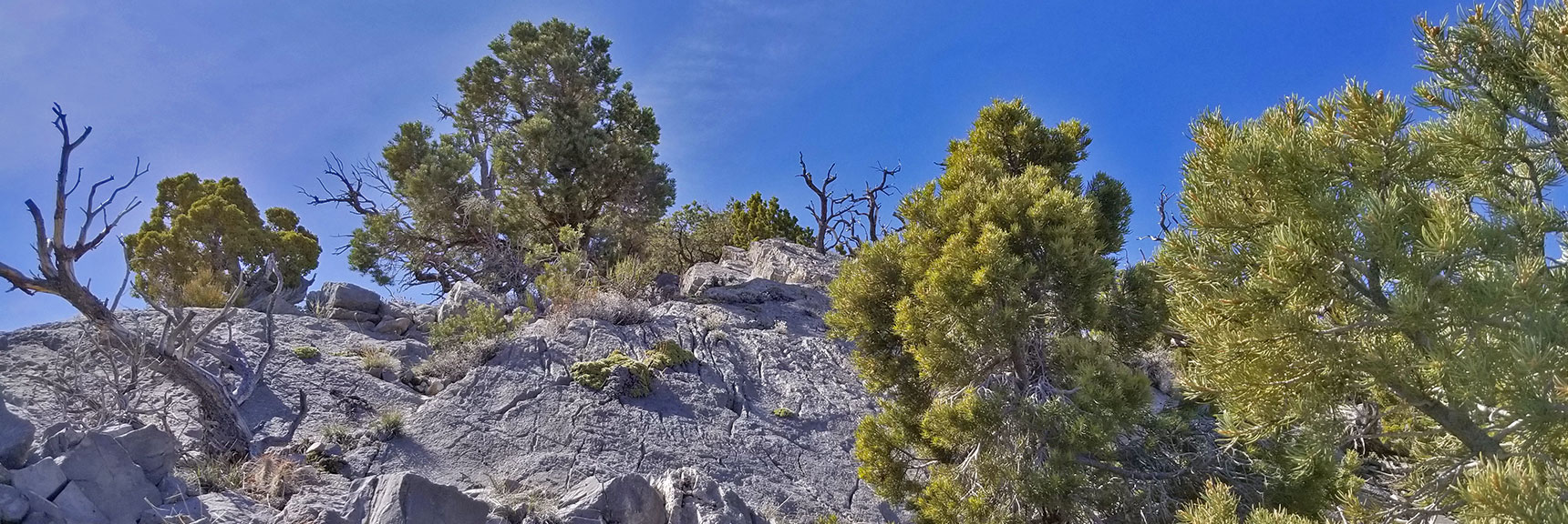 Class 3 Climbing Section on Ridge Just Below La Madre Mountain Nevada Northern Approach and High Points