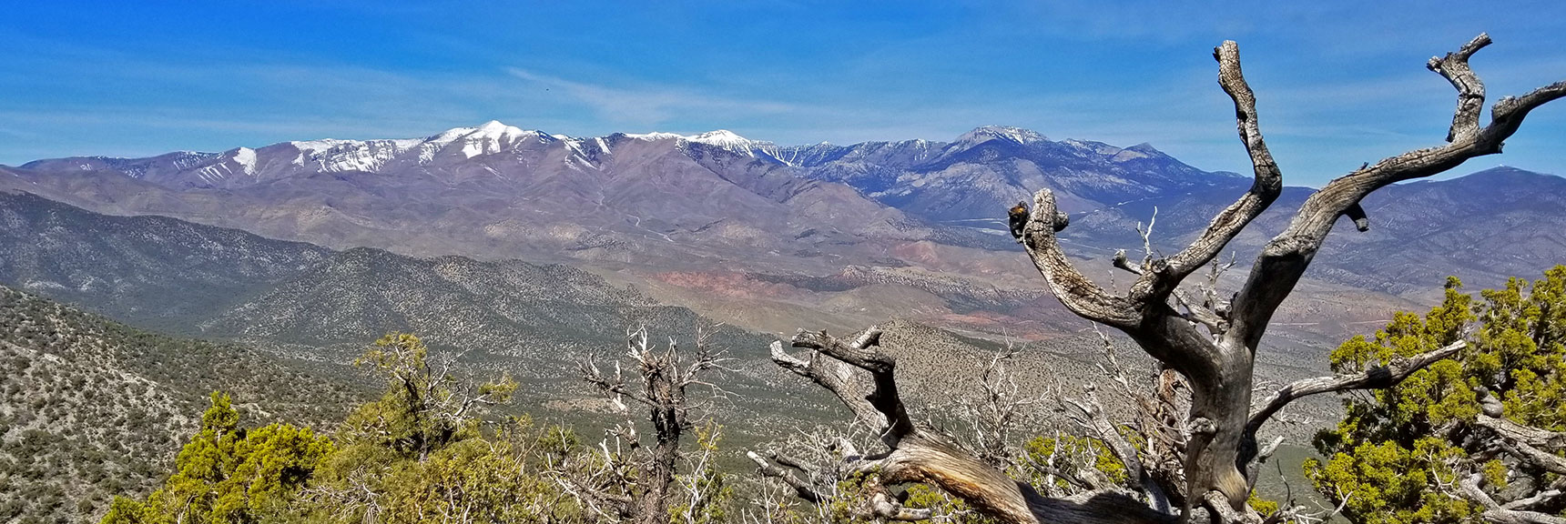 Mt Charleston Wilderness Viewed from Just Below the 7400ft La Madre Mountain Nevada Northern Approach