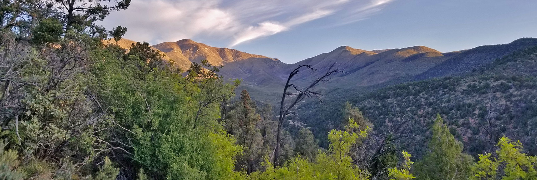 Griffith Peak, Harris Mountain and Saddle View Up Lovell Canyon   Griffith Peak from Lovell Canyon Trailhead, Nevada, 004