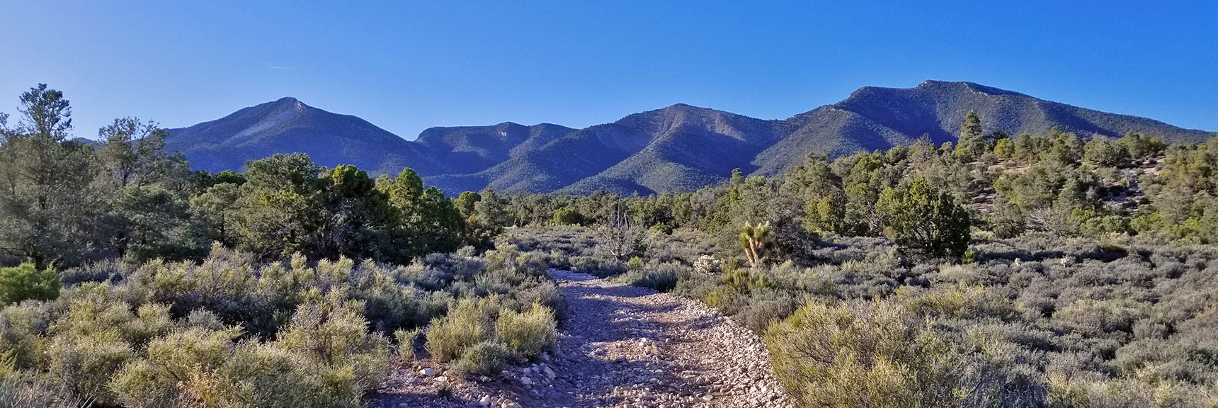 First View of El Padre Mt on 4wd Road Headed to El Padre Mountain, La Madre Mountains Wilderness, Nevada