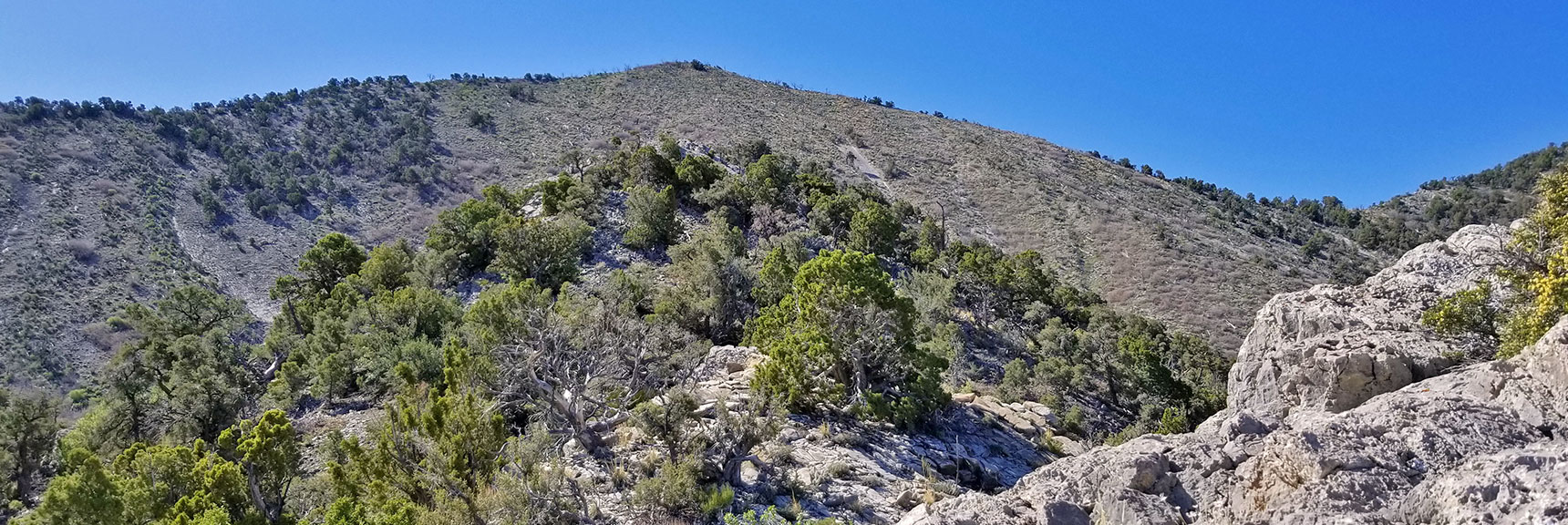 View of Approach Ridge and Summit to the West of El Padre Mountain, La Madre Mountains Wilderness, Nevada