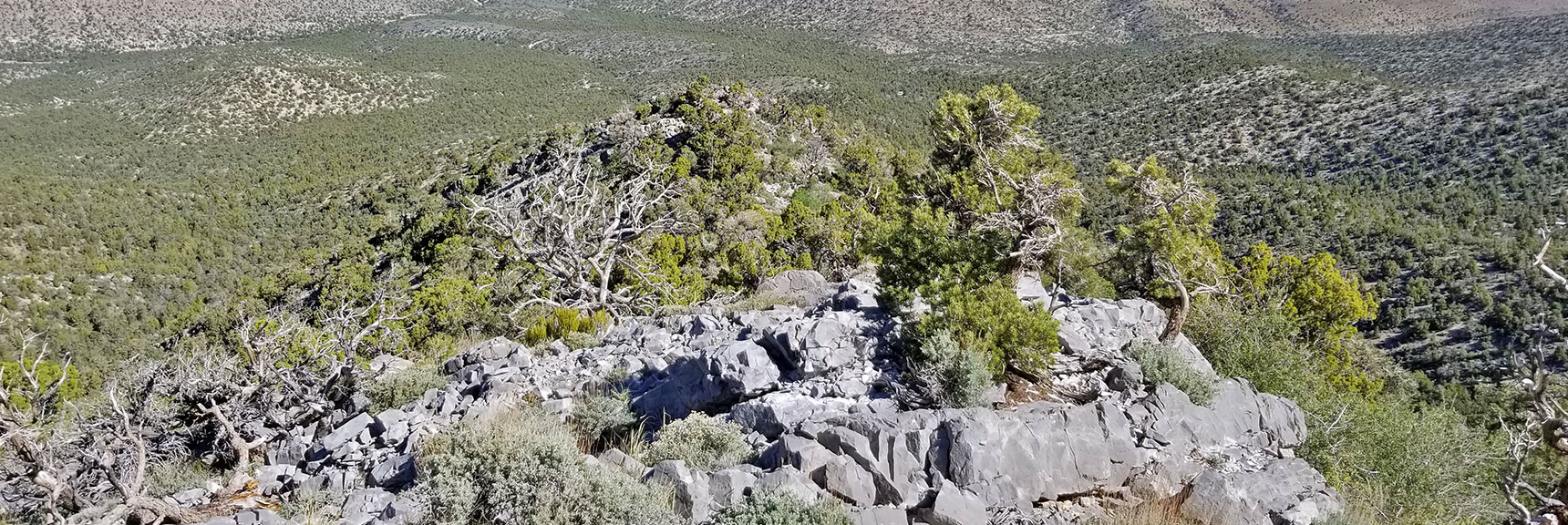 View Down Approach Ridge to Summit West of El Padre Mountain, La Madre Mountains Wilderness, Nevada