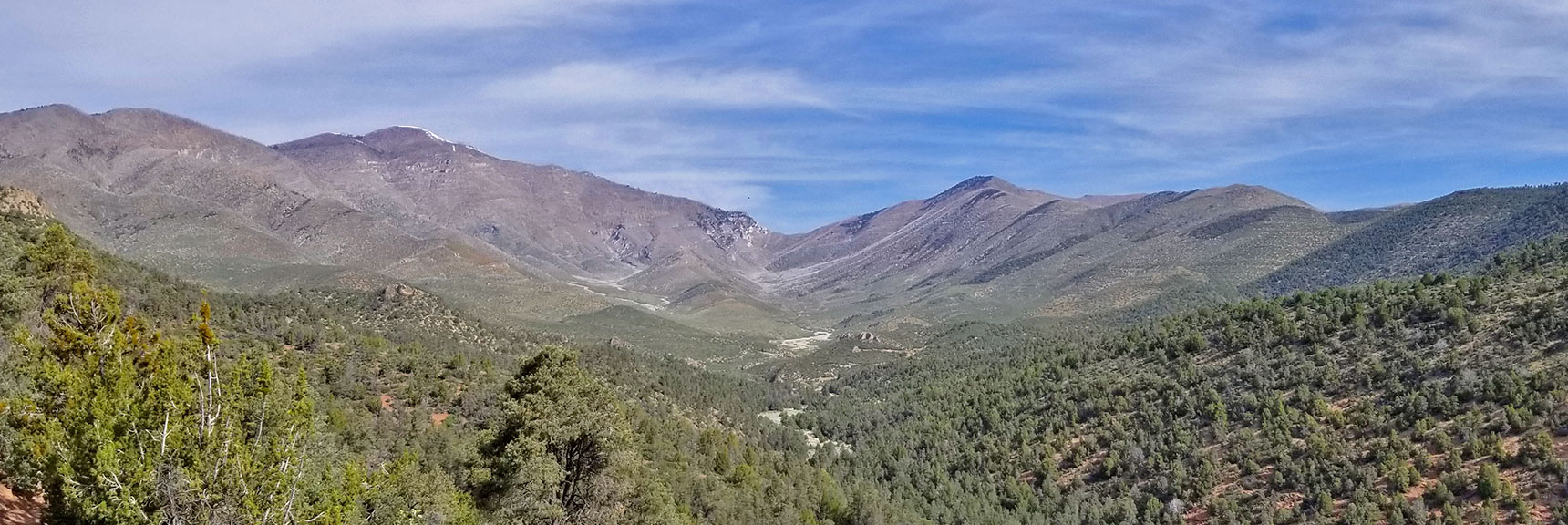 View of Griffith Peak, Harris Mountain and Saddle from Lovell Canyon Trail, La Madre Mountains Wilderness, Nevada