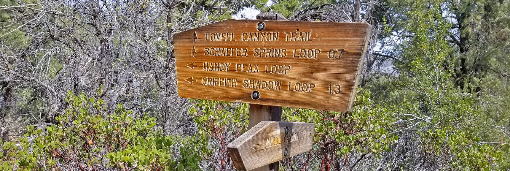 Beginning of Griffith Shadow Loop, Lovell Canyon Trail, La Madre Mountains Wilderness, Nevada