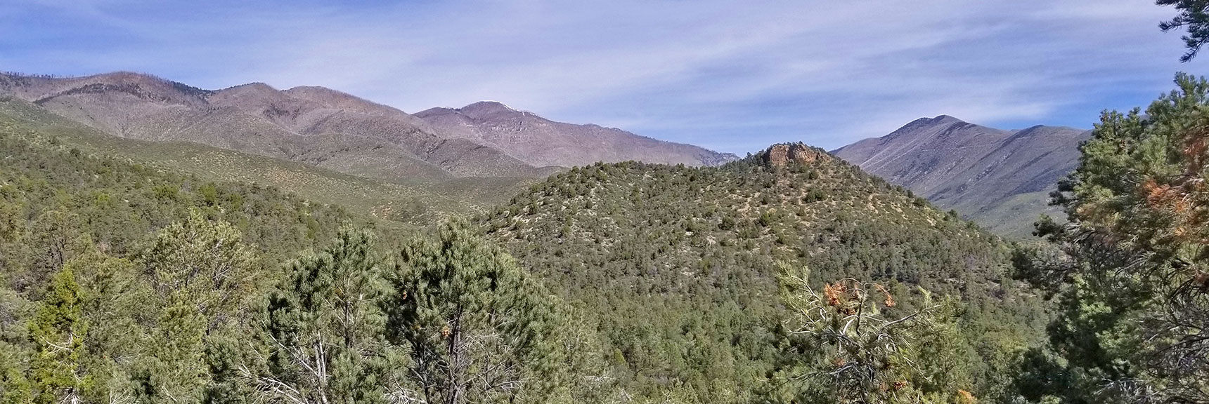 Griffith Peak and Harris Mountain Viewed from Griffith Shadow Trail, La Madre Mountains Wilderness, Nevada