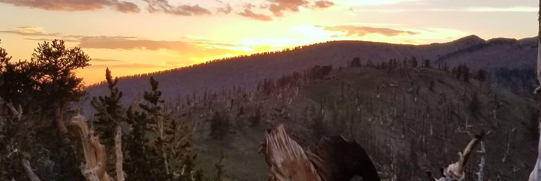 Sunset View Toward Charleston Peak from Kyle Canyon South Ridge | Six Peak Circuit Adventure in the Spring Mountains, Nevada
