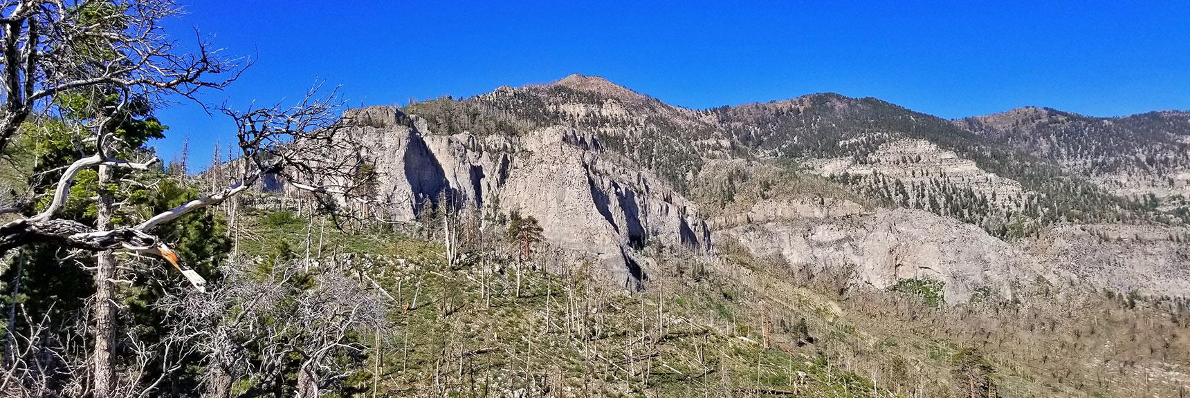View Across to Griffith Peak North Ridge from Harris Mountain Approach Ridge | Harris Mountain Griffith Peak Circuit in Mt. Charleston Wilderness, Nevada