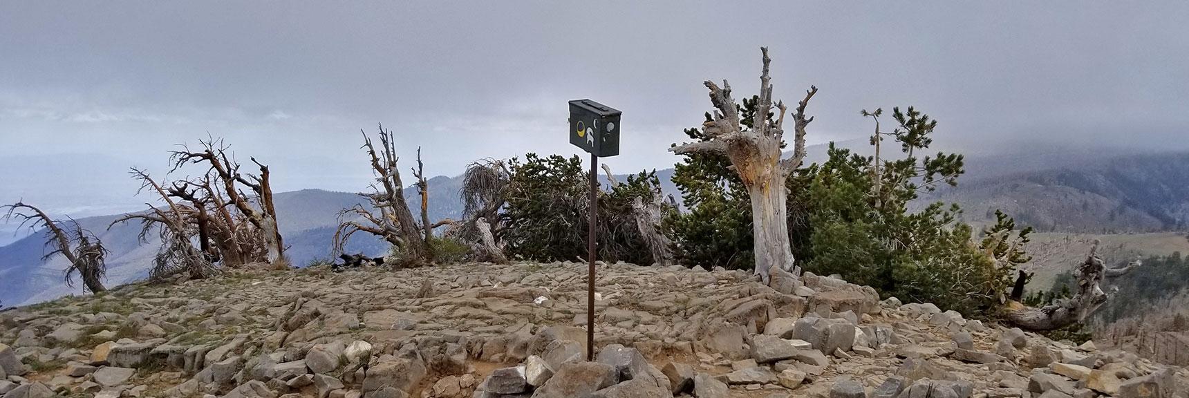 Arrival at Griffith Peak Summit | Harris Mountain Griffith Peak Circuit in Mt. Charleston Wilderness, Nevada