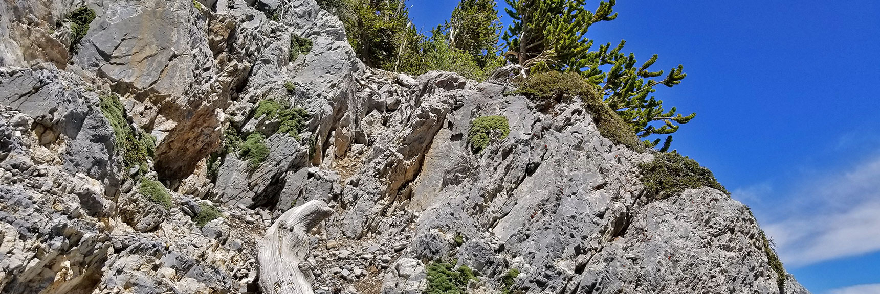 Point Where You Take a Right, Leave the Canyon and Ascend Avalanche Slopes to the Summit   Mummy Mountain Nevada Northeast Approach
