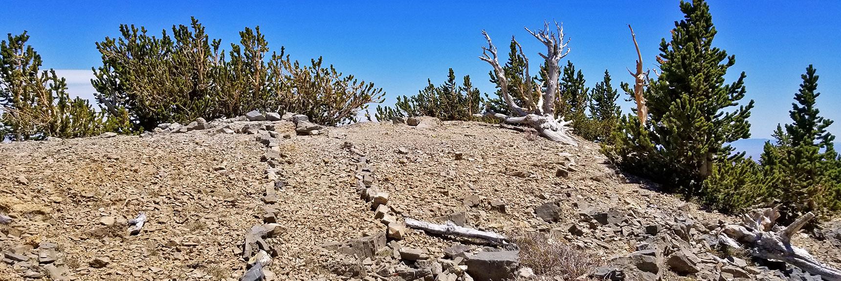 Approaching the True Summit of Mummy Mountain | Mummy Mountain Nevada Northeast Approach