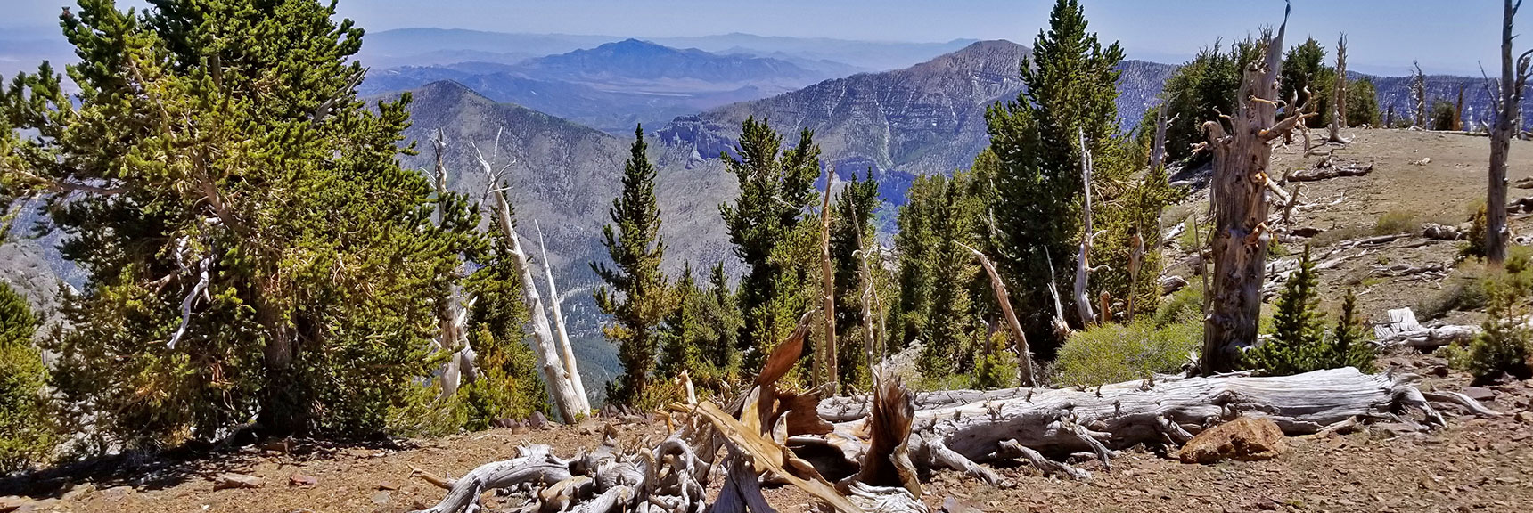 View Toward Harris Mountain, Griffith Peak and Saddle   Mummy Mountain Nevada Northeast Approach