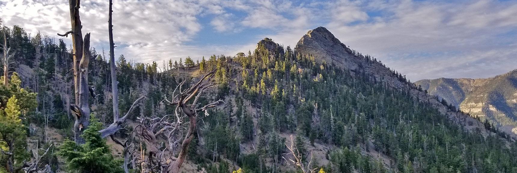 West Side of Cockscomb Ridge on North Loop Trail to Mummy Mountain's Knees | Mummy Mountain's Knees | Mt. Charleston Wilderness, Nevada 001