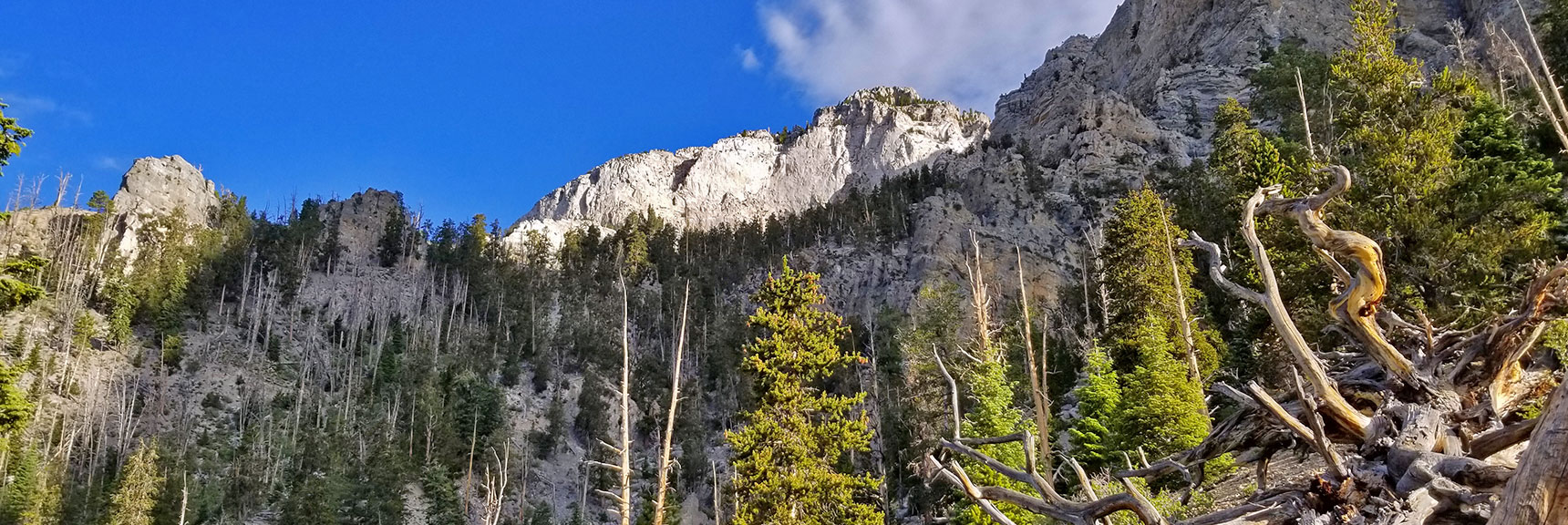 Mummy Mountain from North Loop Trail Approaching Raintree | Mummy Mountain's Knees | Mt. Charleston Wilderness, Nevada 005