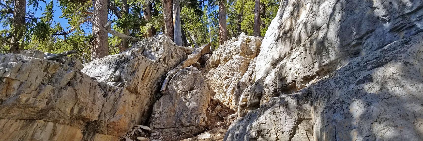 Brief Class 3 Climb on the Way to Mummy's Knees | Mummy Mountain's Knees | Mt. Charleston Wilderness, Nevada 016