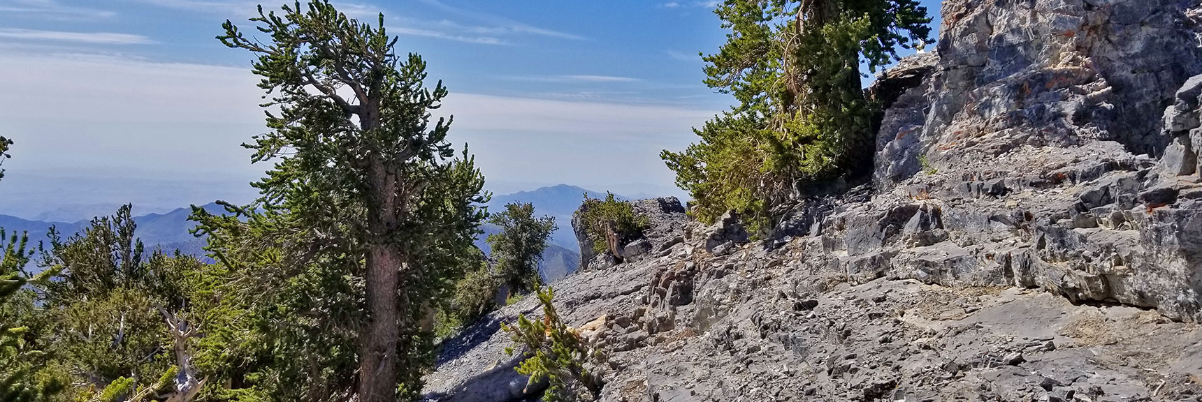 Arrival at Mummy's Knees, Granite Rock and Bristlecone Pines | Mummy Mountain's Knees | Mt. Charleston Wilderness, Nevada 018