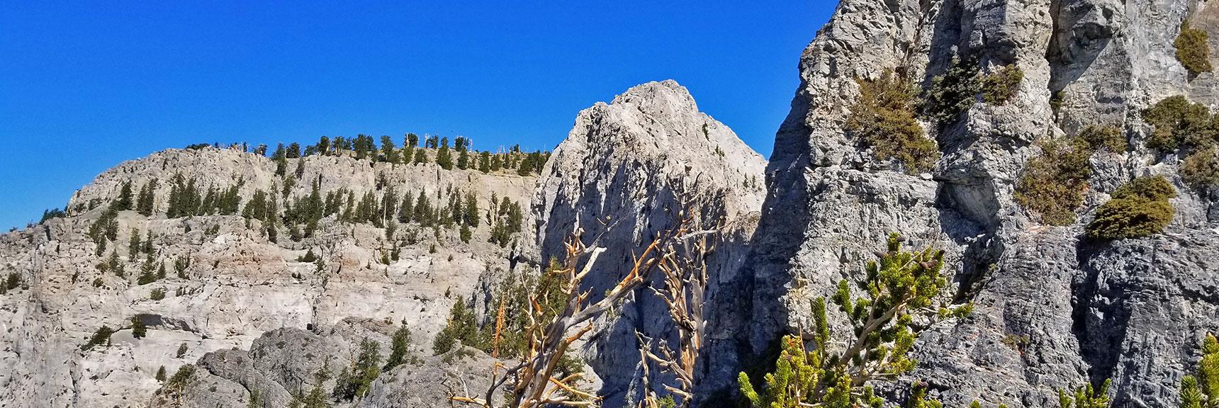 Mummy Mountain Cliffs Viewed from Mummy's Knees | Mummy Mountain's Knees | Mt. Charleston Wilderness, Nevada 021