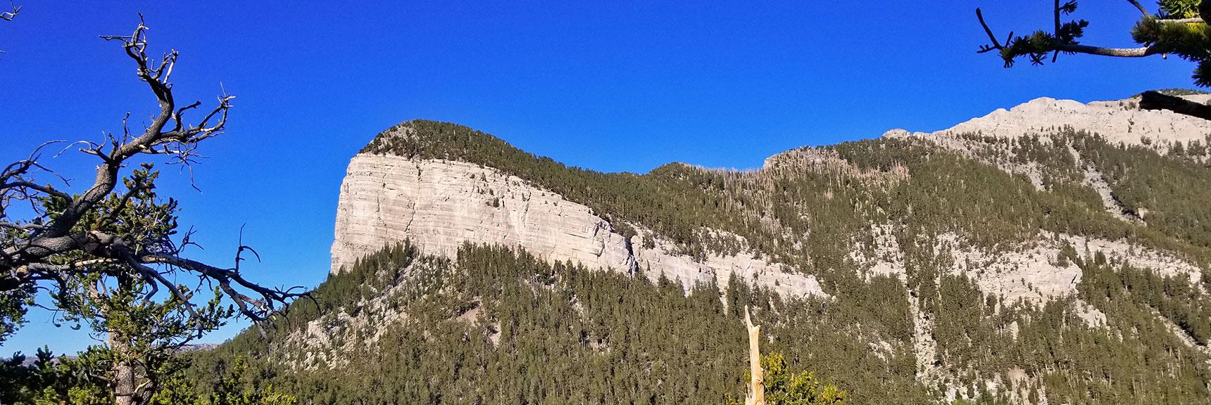 View from High Ridge on North Loop Trail, Mummy Mountain's Toe, Mt. Charleston Wilderness, Nevada