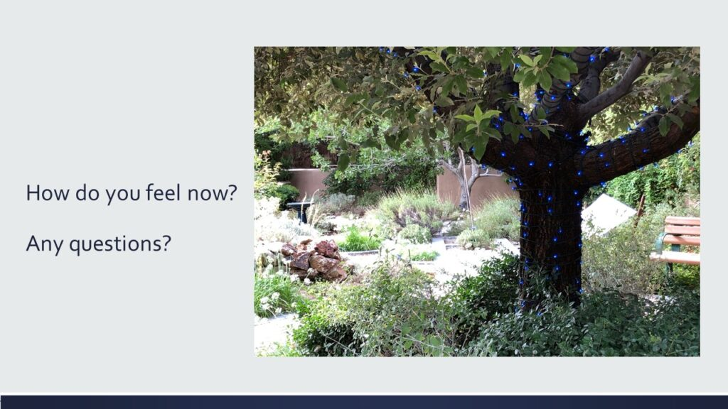 Dianna Whitley   Hypnotherapist   Top 5 Tools to Reduce Stress and Anxiety   Webinar in Achieving Your Optimal Health Webinar Series   Slide 16