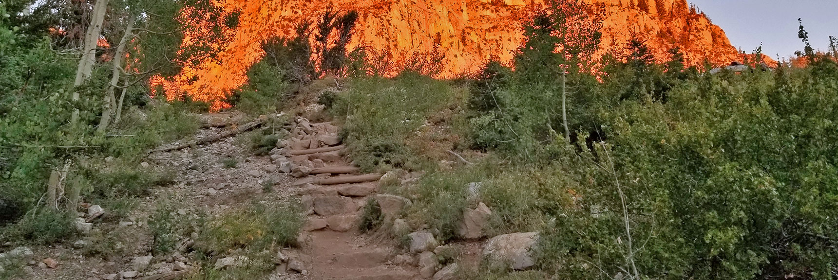 Endless Stairway on South Climb Trail | Griffith Peak & Charleston Peak Circuit Run, Spring Mountains, Nevada