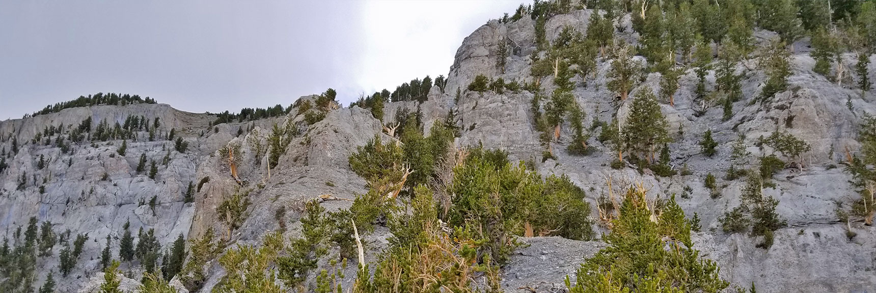 Mummy Mountain Eastern Cliff and Ridge   Mummy Mountain NNE, Mt. Charleston Wilderness, Nevada, Slide 022