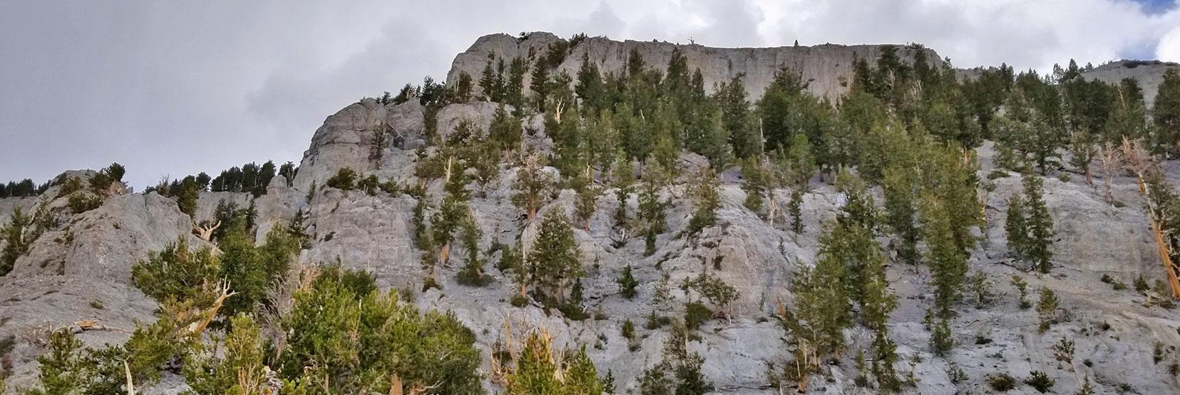 Mummy Mountain Eastern Cliff and Ridge   Mummy Mountain NNE, Mt. Charleston Wilderness, Nevada, Slide 024