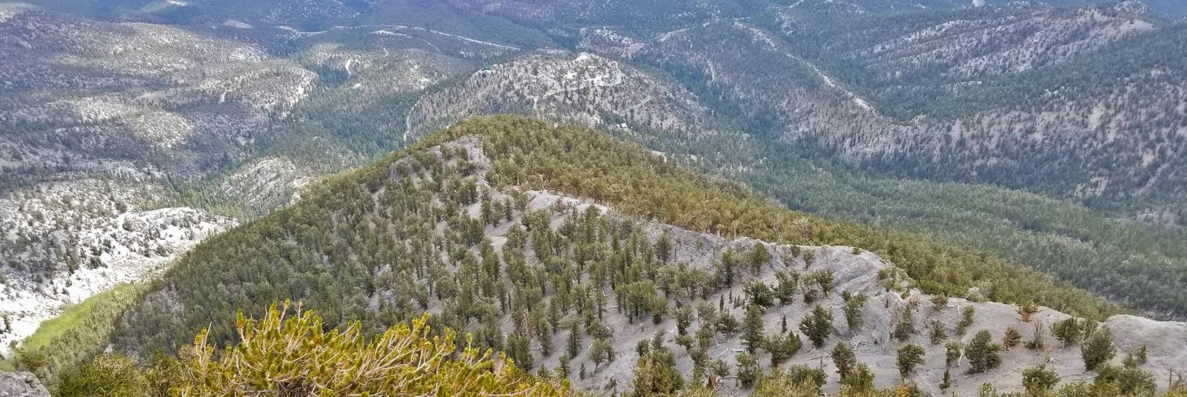 Viewing a Potential Approach Ridge Below Mummy Mt. Eastern Cliffs   Mummy Mountain Northern Rim Overlook, Spring Mountain Wilderness, Nevada