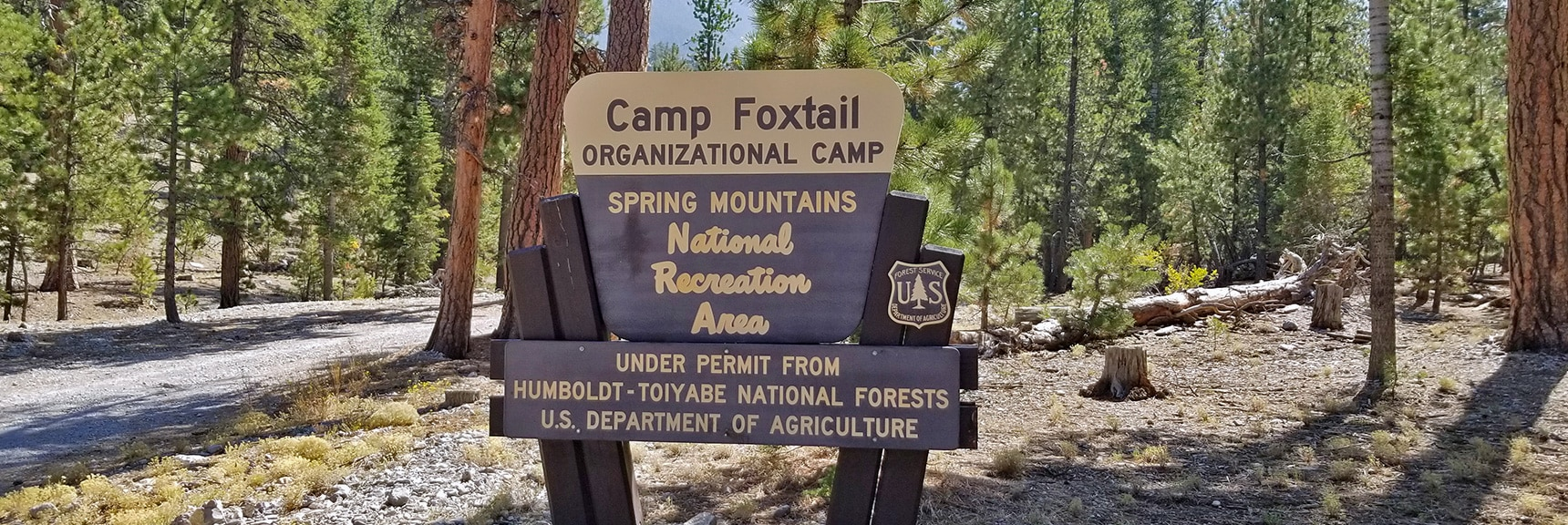Entrance Road to Camp Foxtail Girl Scouts Camp   Foxtail Canyon   Foxtail Girl Scouts Camp   Mt Charleston Wilderness   Spring Mountains, Nevada