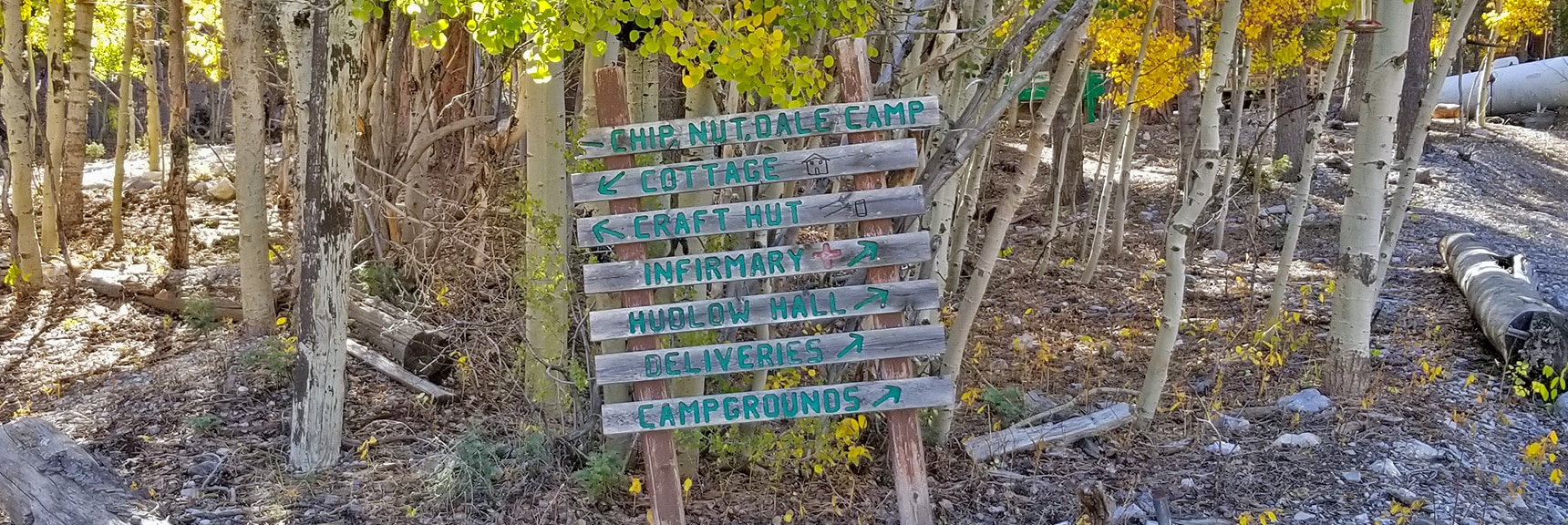 Camp Foxtail Girl Scouts Camp Directional Signs   Foxtail Canyon   Foxtail Girl Scouts Camp   Mt Charleston Wilderness   Spring Mountains, Nevada