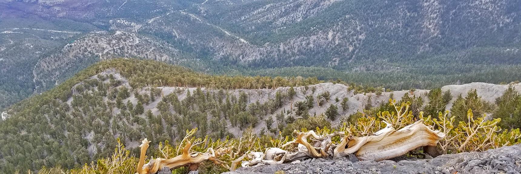 Ridge Below the Eastern Summit Cliffs, Potential Summit Route   Mummy Mountain Northern Rim Overlook, Spring Mountain Wilderness, Nevada