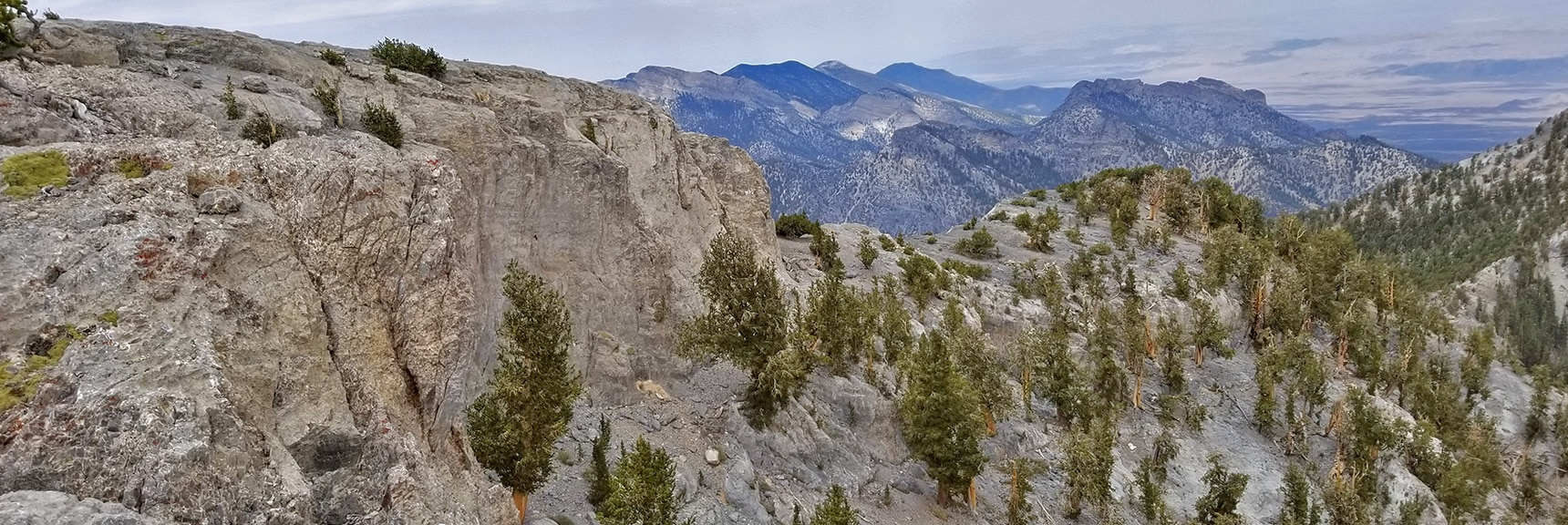 View North from Eastern Summit Cliffs, Potential Summit Approach Route   Mummy Mountain Northern Rim Overlook, Spring Mountain Wilderness, Nevada