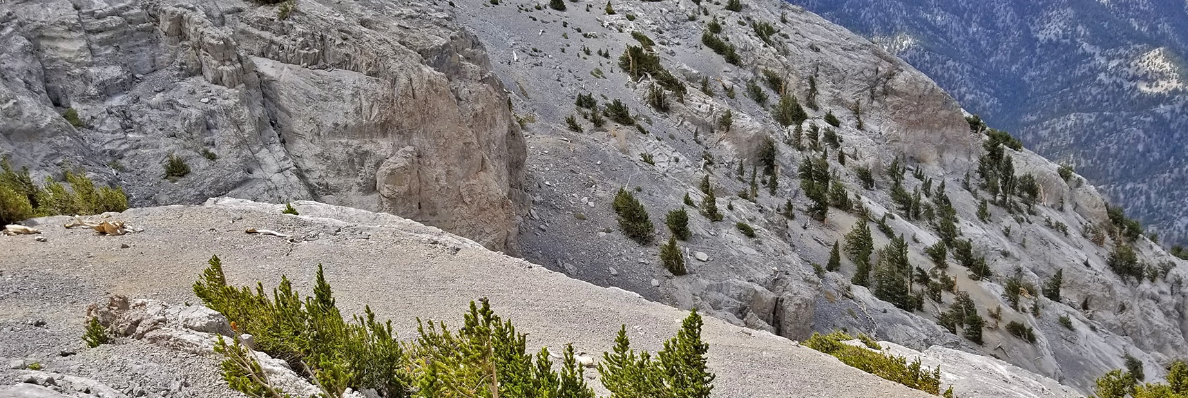 View Further Down 1st Avalanche Slope Wash Toward Lee Canyon   Mummy Mountain Northern Rim Overlook, Spring Mountain Wilderness, Nevada